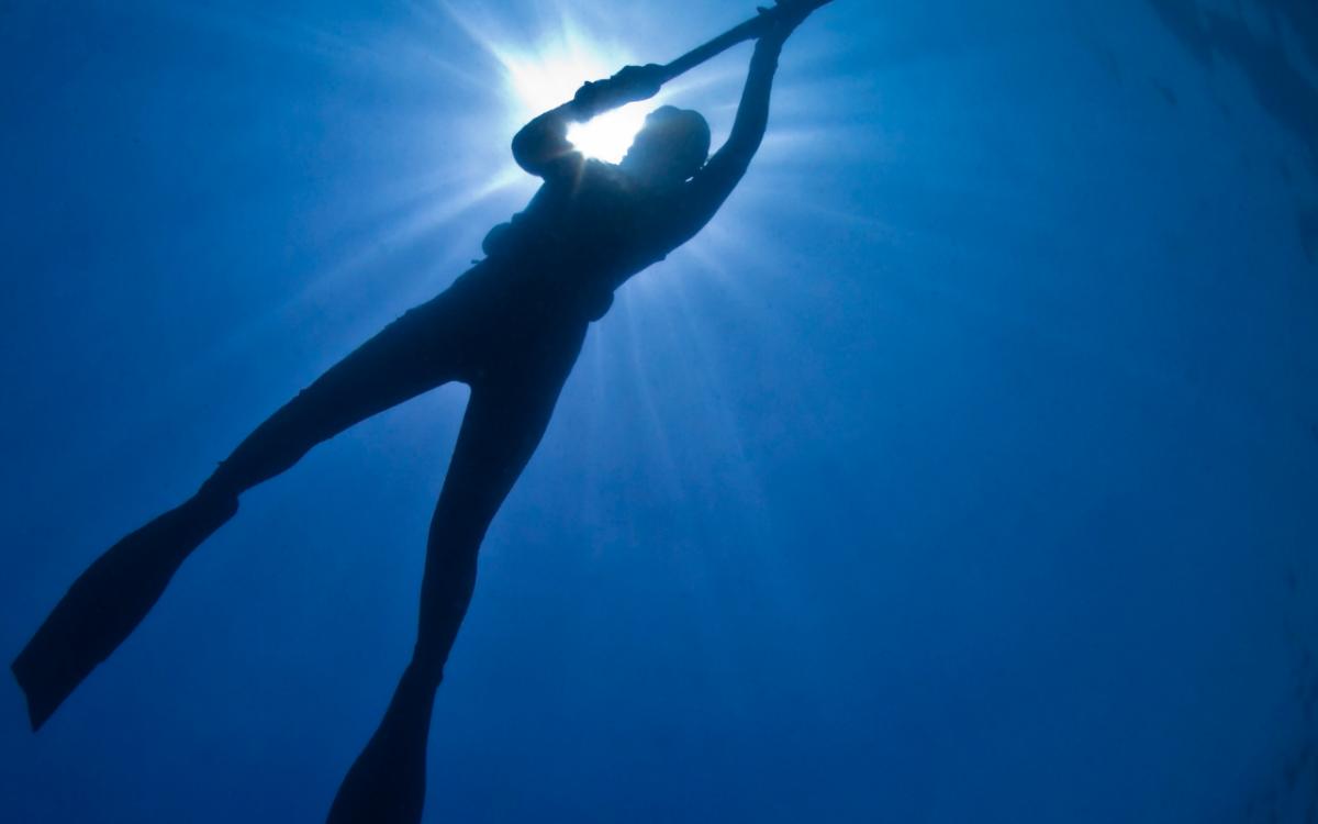 Disponible alta de licencia de Pesca submarina online